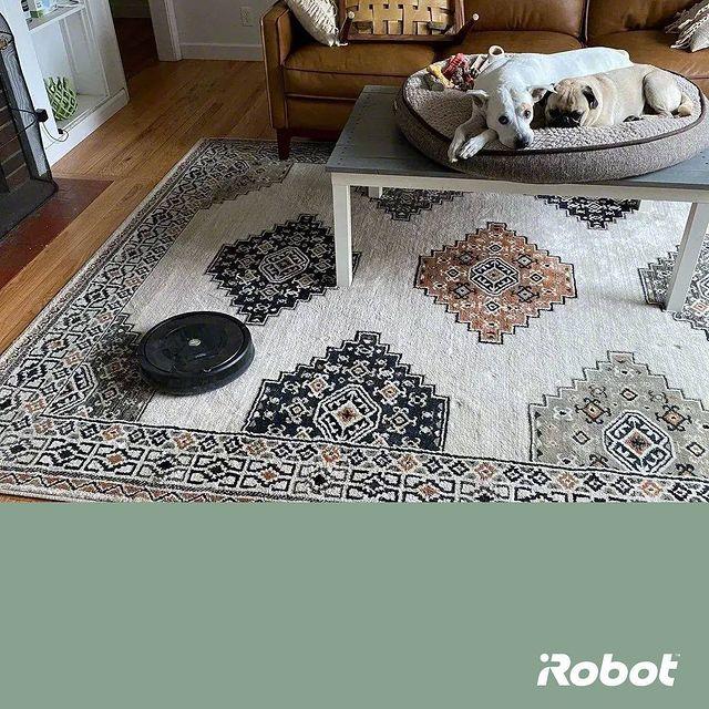 Věnujte se svým oblíbeným činnostem, zatímco my uklízíme.🐶 #Roomba #irobotlove